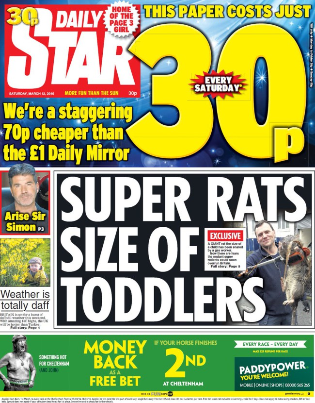 DAily Star rat toddlers