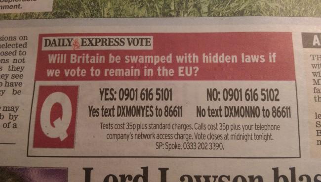 EU vote DAily Express