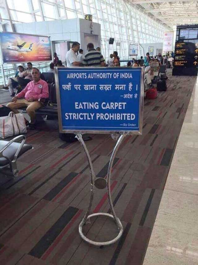 eating carpet