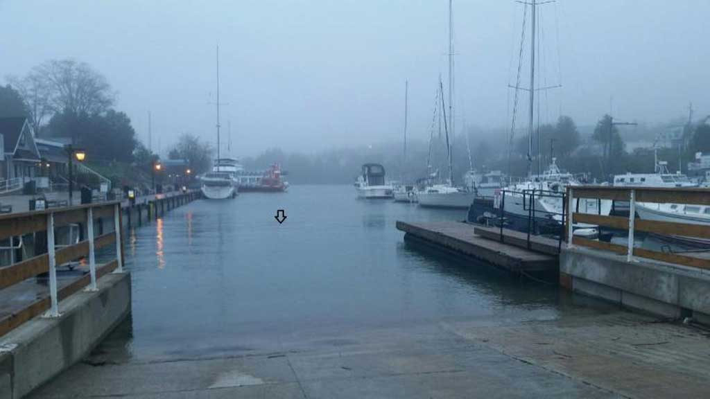 harbour driver sat nav 1