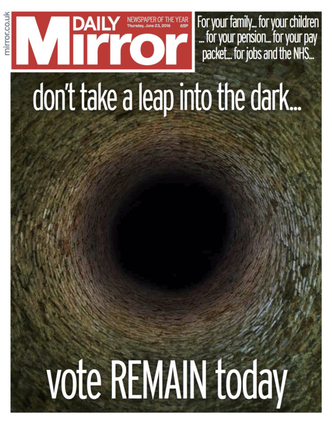 daily mirror eu ref