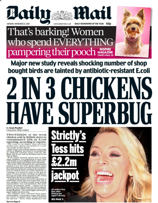 chicken superbugs daily mail