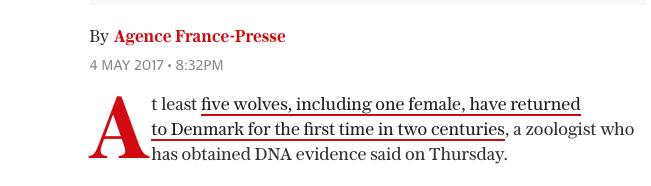 wolves denmark