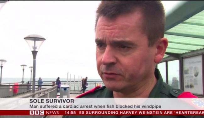 bbc pun sole survivor
