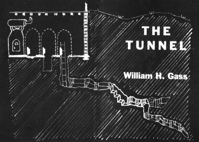 the tunnel william gass hate
