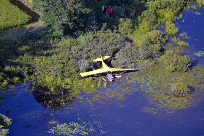 ashes  HANSON, MA Site of plane crash after two brothers scattered their father's ashes from the plane, Friday August 24, 2018 Photo courtesy Massachusetts State Police