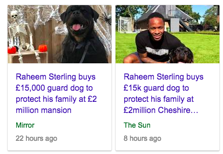 raheem sterling dog