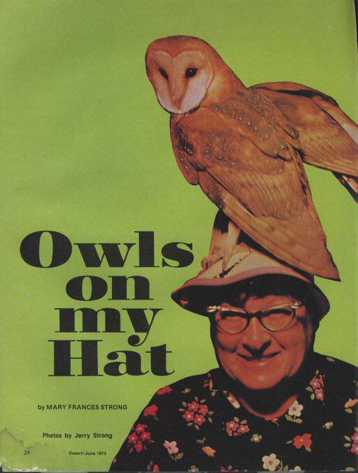 Book of the day : 'Owls on My Hat' - June 1975