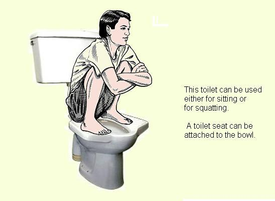 Picture link game. - Page 37 Pedestal-squat-toilet