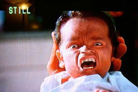 arnold swarchenegger children. Arnold Schwarzenegger Secret