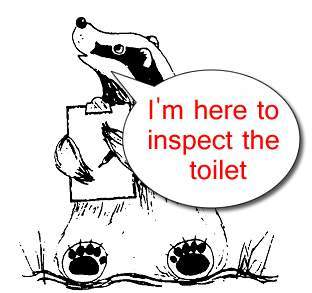 badger-toilet