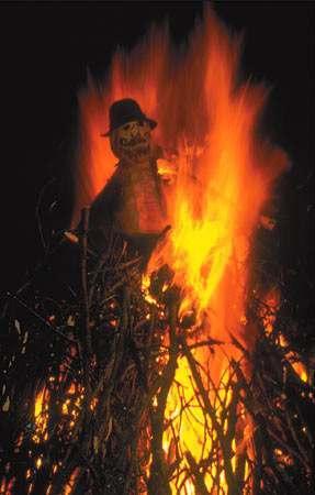bonfire_night