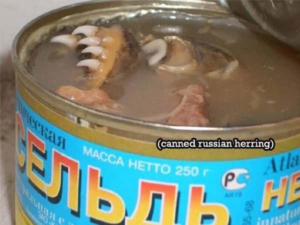 canned-herring