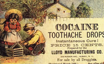 cocaine_tooth_.png