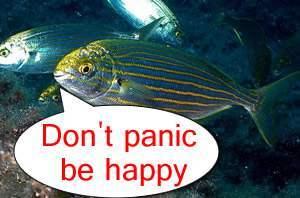 drugs-fish