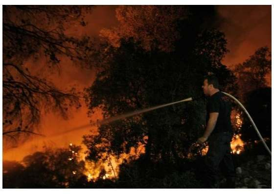 fire israel Environmentalist Burning Toilet Paper Caused Israel Fires: Greenpeace Blames Coal
