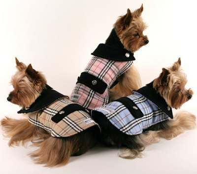 furberry-dog-coat.jpg