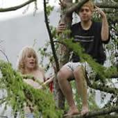 gay-tree