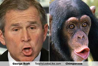george bush3 Michelle Obama Is A Monkey And Other Offensive Google Images