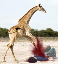giraffe-bomber.png
