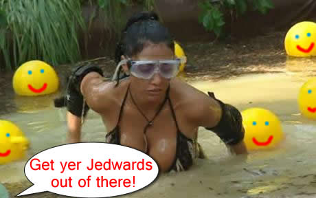 katie-price-swamp