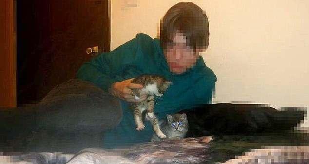 Anorak News Who Is Hamburg S Christmas Day Kitten Killer