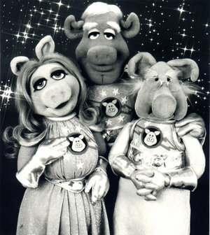 pigs-in-space.jpg