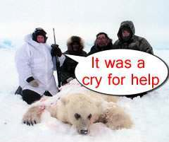 polar bear suicide Knut The Polar Bear On Suicide Watch