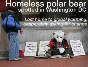 polar bear washington 300x230 Feed Homeless People To Washington Polar Bears