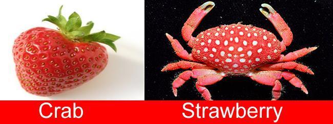 strawberry-crab1