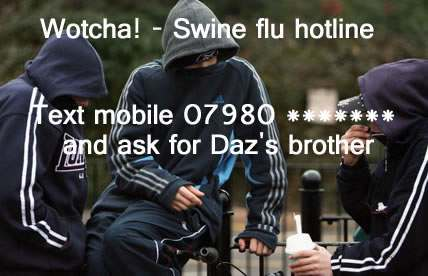 swine-flu-hotline