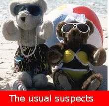 teddy-bear-beach.jpg