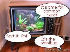 tv-fish-tanks.jpg