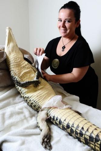 crocodile-wax