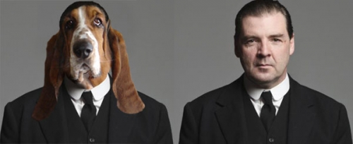 downton-abbey-dogs-1