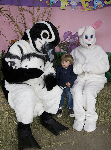 easter-bunny-17