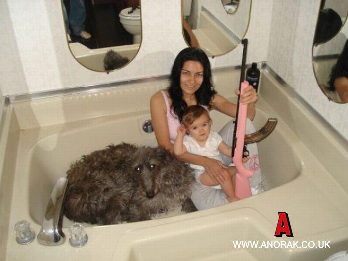 bad-family-photos-2