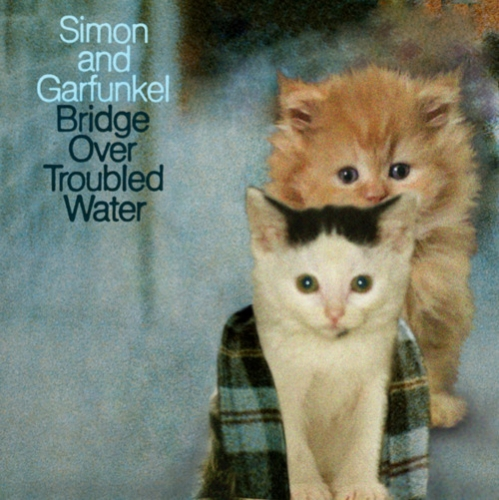 garfunkle-and-simon-kitten-covers