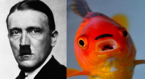 hitler-fish_0