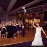Brides Throwing Cats: The Best Of