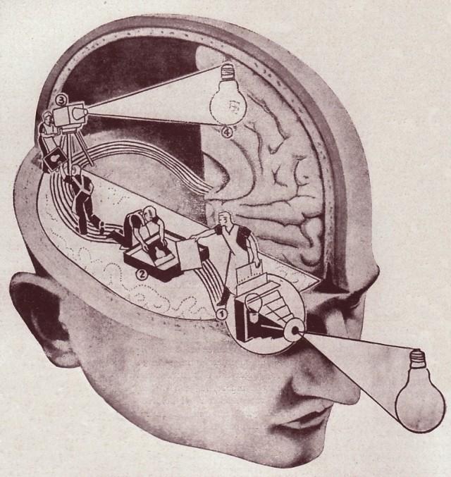 brain crime