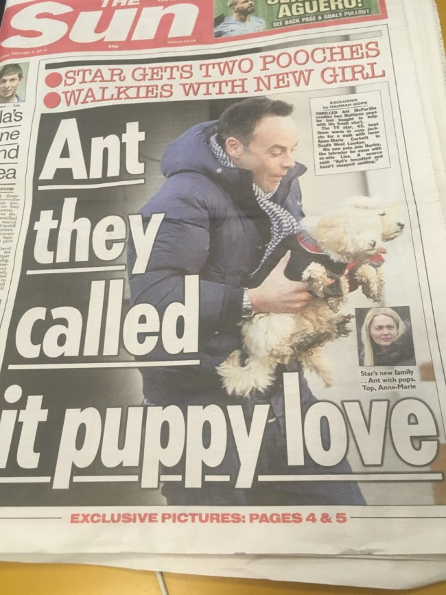 Ant Mcpartlin the sun bgt multipoo