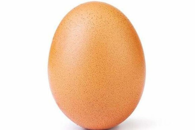 Corbyn egg