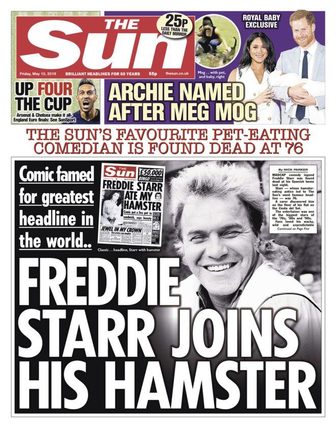 Freddie Stars hamster