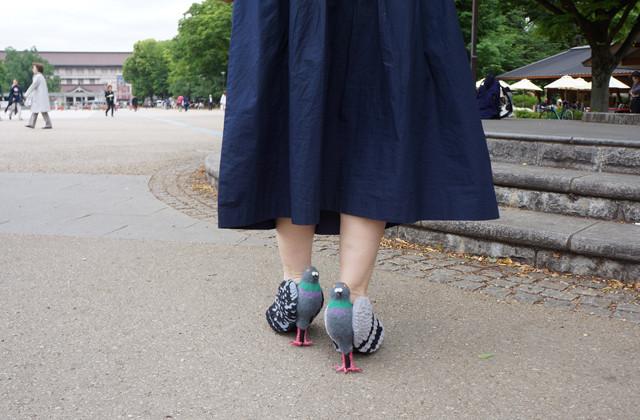 pigeon shoes japan