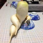 8 of the most seductive radishes