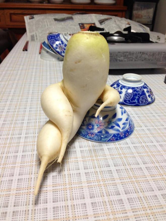 seductive radishes