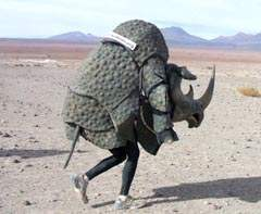 rhino poacher elephant